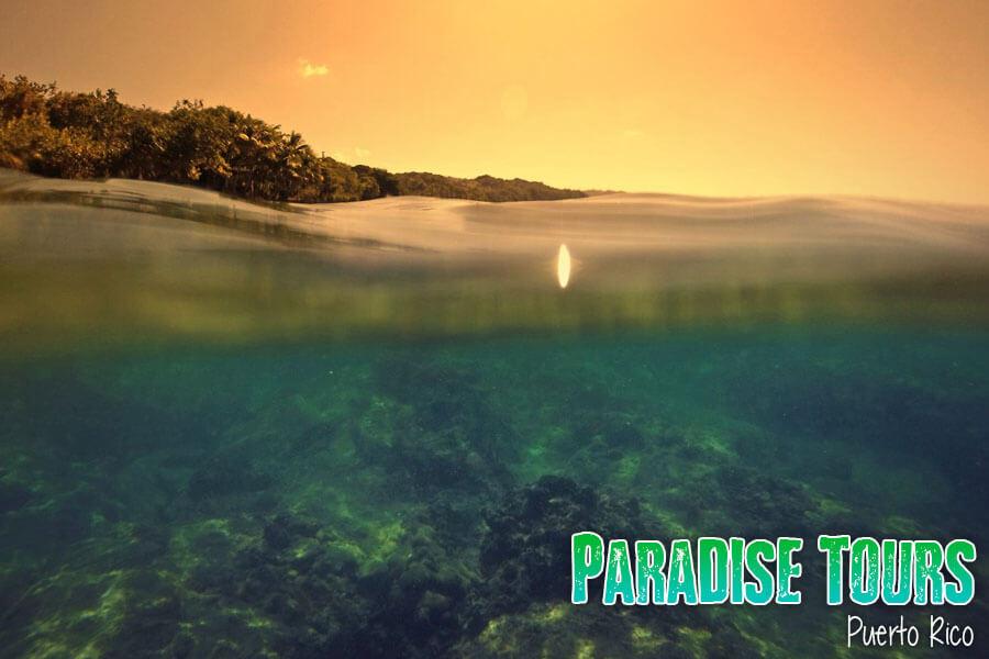 snorkel tour puerto rico